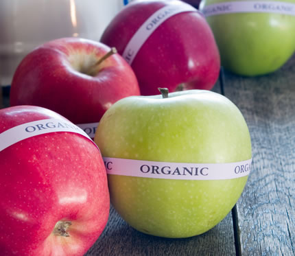 A collection of ripe apples, each with a label marked organic