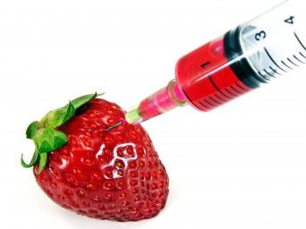 A syringe draws fluid from a strawberry