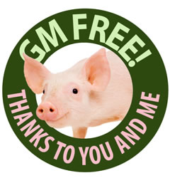 A friendly pig in a sign that reads GM Free! Thanks to you and me.