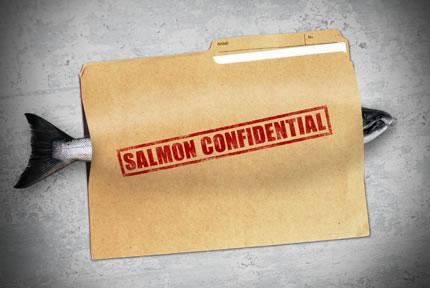 Salmon Confidential