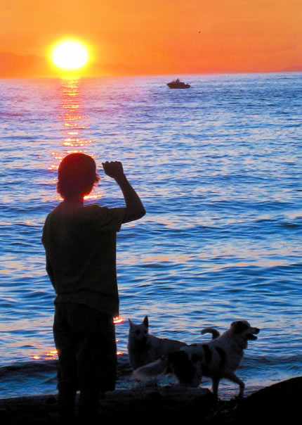 person and dogs silhouetted against setting sun