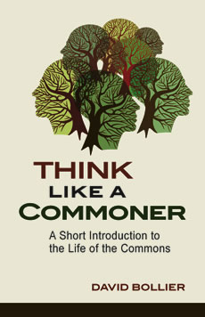 Think Like a Commoner book