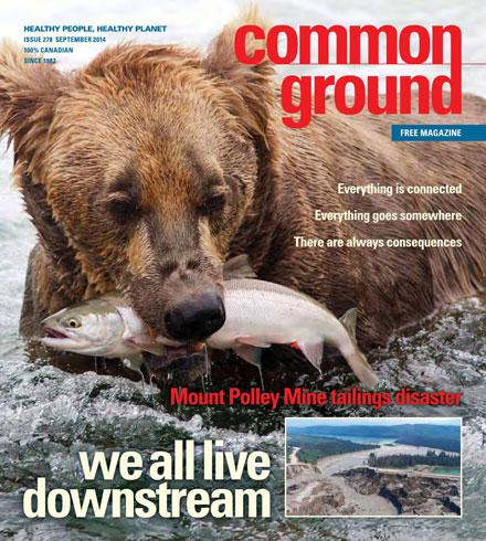 Common Ground September 2014 cover