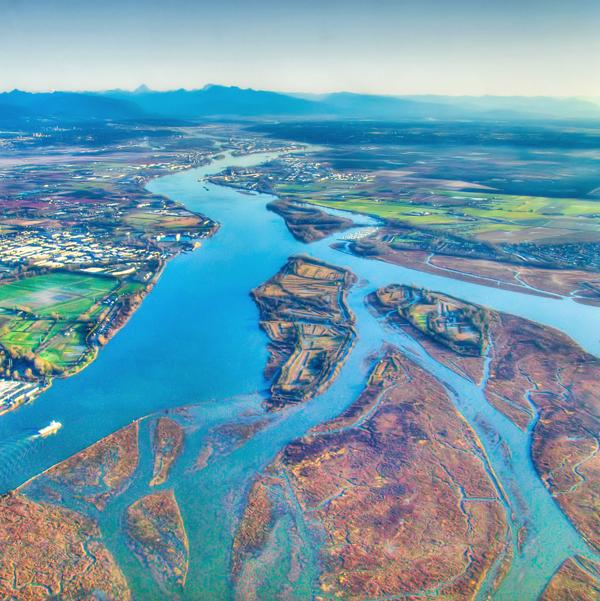 Fraser Delta