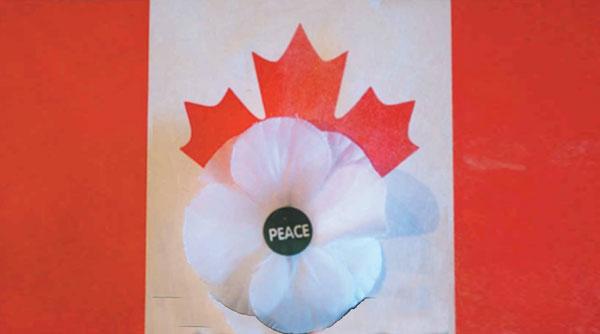 white poppy and flag