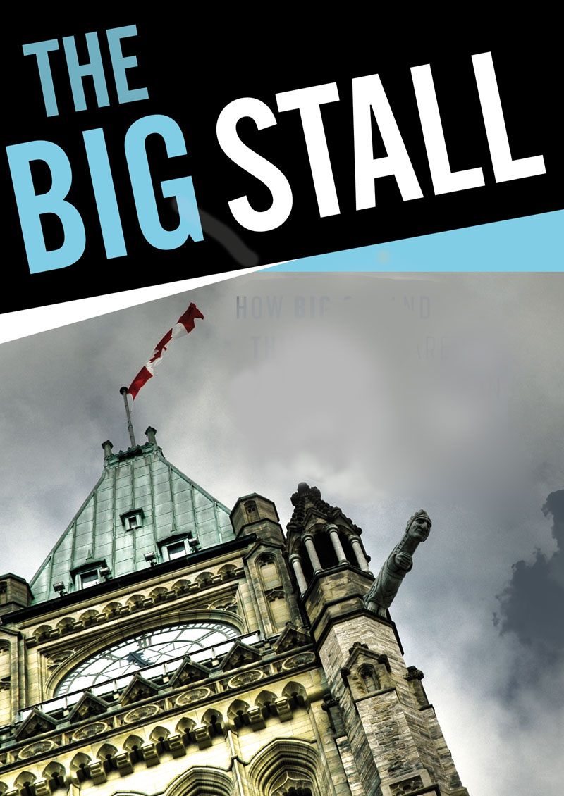 The Big Stall book cover
