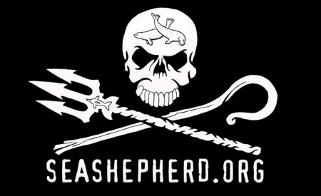 Sea Shepherd's declaration  of media war against BC seal hunt
