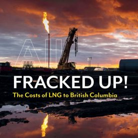 Clean LNG  a myth, a bridge to climate nowhere and a dangerous fossil fuel