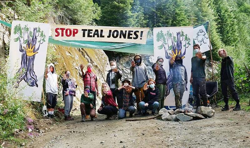Stop Teal Jones